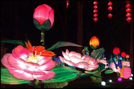 Festival des lanternes, 2019;