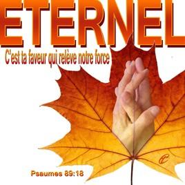 Prions que nous tombions entre les mains de l'Éternel, et non entre les mains des hommes!