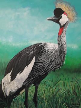 painting crane royal birds