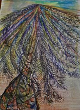 Palmier sous le vent
