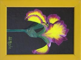 Peinture Iris jaune