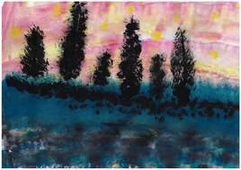 Les arbres dans la nuit