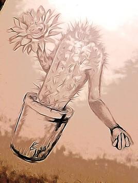 Le monde entier est un cactus!