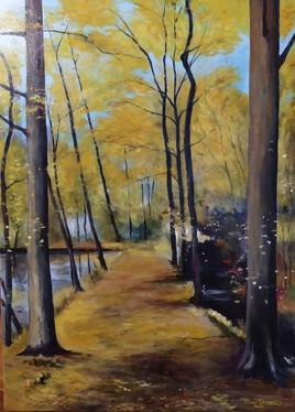 Chemin du bord de l'étang de Moraypré