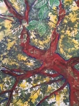 L'arbre rouge dispo