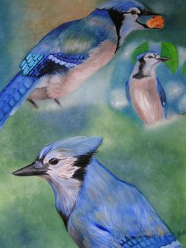 le trio des geai bleus