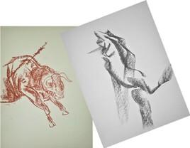 Toro et torera