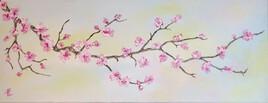 Branche de cerisier en fleurs