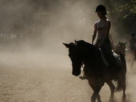 Chevauchée dans la brume