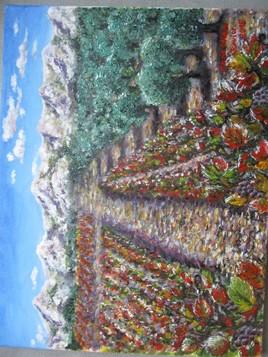 Vignes rouges