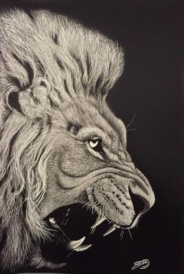 Lion N&B