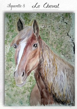 LE CHEVAL......( aquarelle 8)