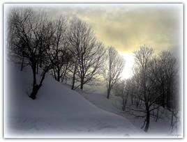 Soleil hivernal.