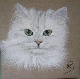 Chat blanc réalisé à l'acrylique