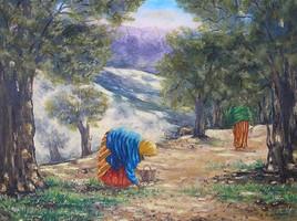 Saison des olives
