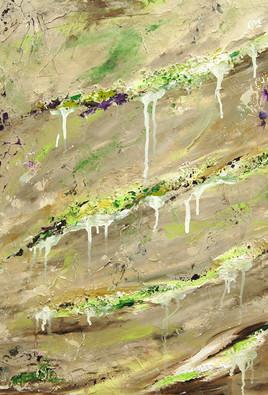Lichens et Algues