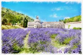 Provence Abbaye Notre-Dame de Sénanque