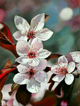 Les fleurs de cerisier roses