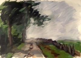 paysage 8