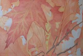 feuilles d' automne