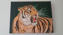 Rugissement de Tigre