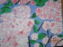 Cerisiers Japonais 2