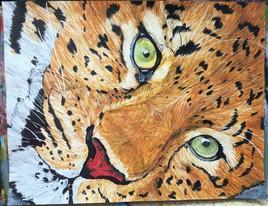 le leopard