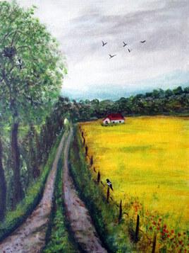 Le champ de colza