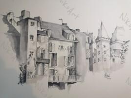 Château de Pau vu du hedas