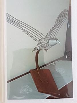 aigle en plein vol