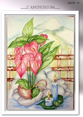 L ANTHURIUM (Aquarelle 46 )