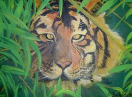 Tigre dans les hautes herbes