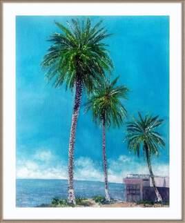 Les palmiers de Tichy