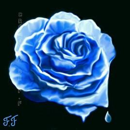 ROSE SCULPTÉE DANS LA GLACE peinture 8×8cm