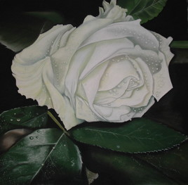 Rose,oh ma rose...