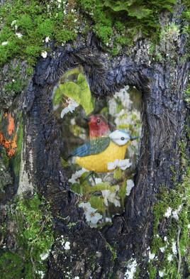 Que cache le coeur d'un arbre ?
