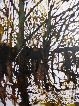 étang du Boulet Feins