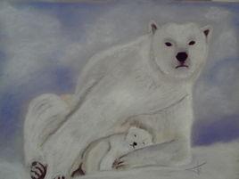 ourse polaire et son petit