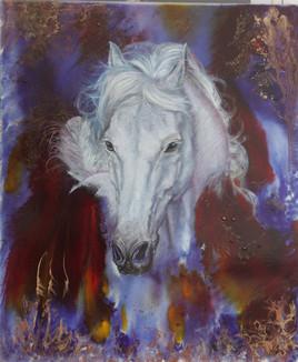 Stormyhorse