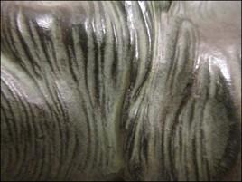 Ondulations : Bronze