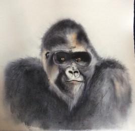 Tendre Gorille...