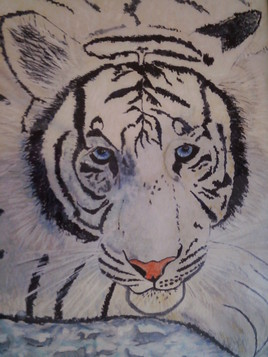 Tigre blanc sur glace