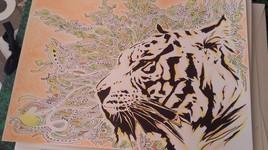 Tigre moovens