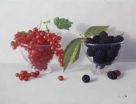 Fruits rouge et noir(groseilles et mures) (27cm x 35cm)5F