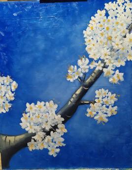 Cerisier de Kieffer