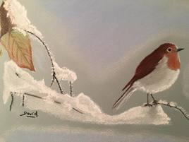 rouge-gorge en hiver