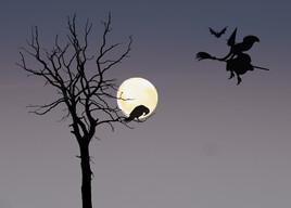 Ballade au clair de lune