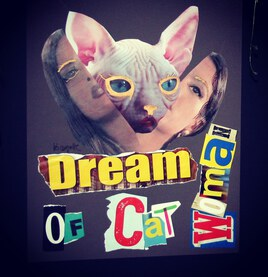 dream of a catSphinx woman