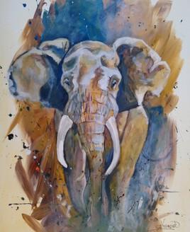 Le viel Eléphant