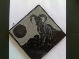 Mouflon corse au clair de lune